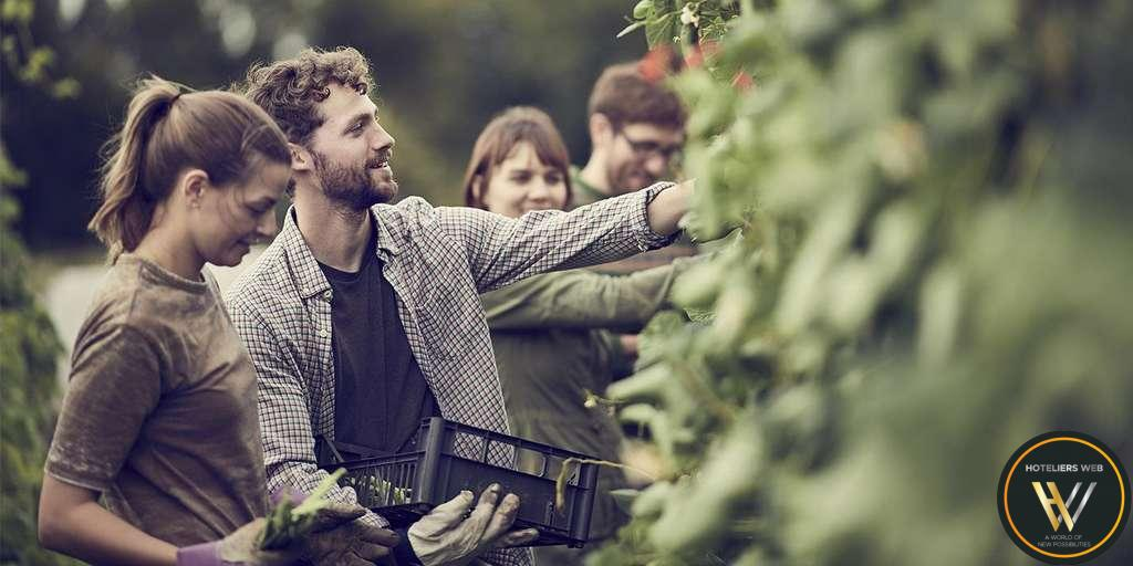 Healthy and Sustainable Food for a Positive Impact